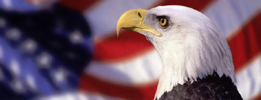 American Eagle with USA flag behind